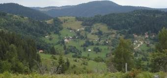 Asfaltiranje lokalnih puteva u MZ Srednje i MZ Dragoradi