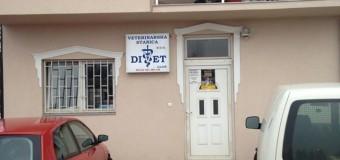 """Veterinarska stanica """"DI-VET"""" nastavlja projekat sterilizacije i kastracije uličnih pasa"""