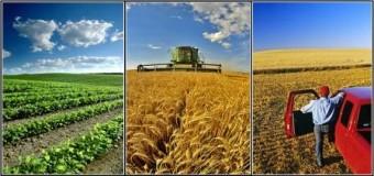 U FBiH registrovano 625 poljoprivrednih obrta i zaposlene 1.384 osobe