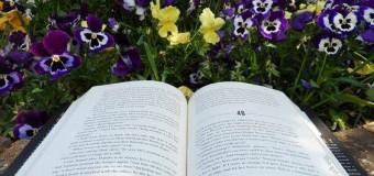 Knjiga je jedinstvena, prenosiva magija
