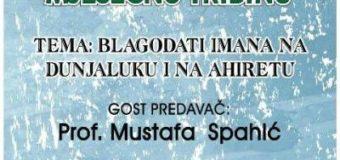 Predavač aprilske tribine ilijaških džemata profesor Mustafa Spahić