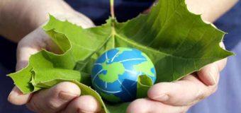 Danas je Svjetski dan zaštite životne sredine