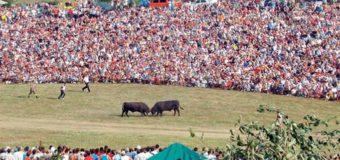 Sve spremno za jubilarnu 70. manifestaciju Čevljanovići 2017
