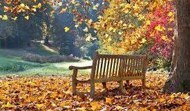Stigla je jesen